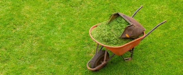Mantenimiento de jardines ibiza for Trabajo de mantenimiento de jardines