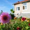 Ibiza Kota Services - Jardines